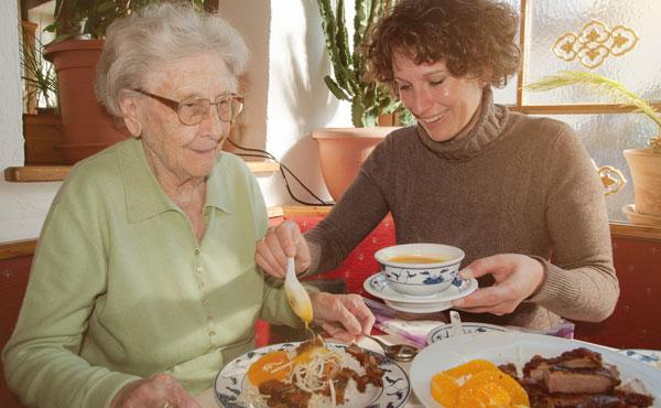 Offre d'emploi auxiliaires de vie à Ozoir-la-Ferrière (77) par Petits-fils, aide à domicile pour personnes âgées