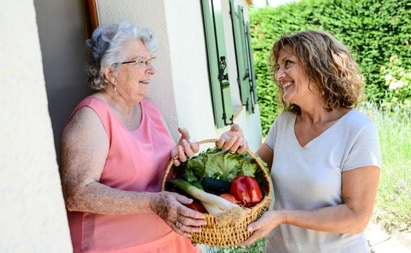 Offre d'emploi - Auxiliaires de vie au Raincy par Petits-fils, aide à domicile pour personnes âgées